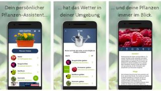 "App ""Green Balcony""; Screenshot Google Play"